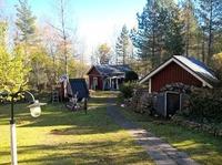 piha-aluetta, taustalla sauna etualalla maakellari