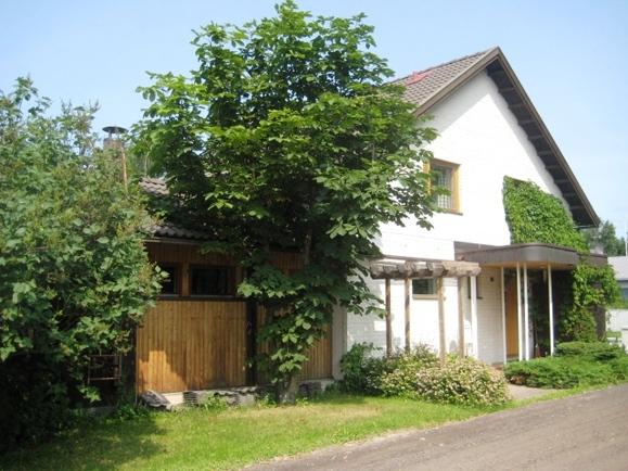 talon saunasiipi aidan ja pensaiden suojassa
