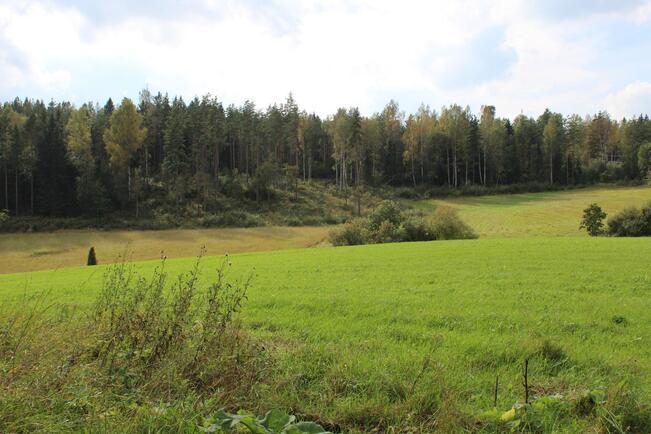 Peltonäkymää / Utsikt över åkrarna