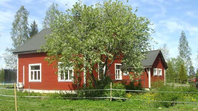 Kuva talosta laitumen puolelta kuvattuna