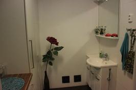 WC 1:n käsienpesuallas