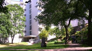 Talo Tauno Palon puistosta. Nuoli osoittaa asunnon parveketta ja ikkunoita.