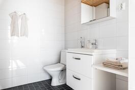 Erillinen wc makuuhuoneen yhteydessä.