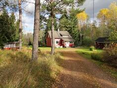Vasemalla kesäkeittiö ja lampi, oikealla sauna.
