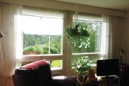 olohuoneesta ikkunanäkymää