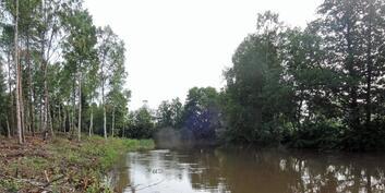Jokiranta pohjoiseen