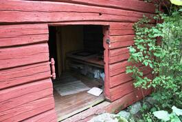 ovi saunaan-ingång till bastun