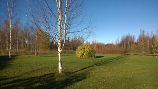 Piha-alueena on noin 1 ha hoidettua nurmikkoa