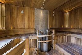 Puusepän loihtima sauna