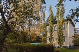 talo on kaunis ja vehreä tontti korostaa taloa