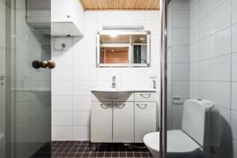 pesuhuoneessa paikka pesutornille ja suihku erotettu seinämällä