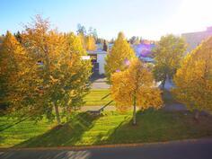 Näkymä lasitetulta parvekkeelta syksyllä