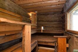 Tyylikäs sauna.
