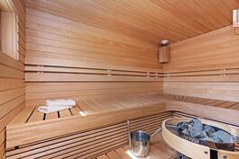Sauna remontoitu vuonna 2015.