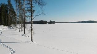 Talvinäkymää rannalta