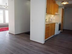 Olohuone/eteiskäytävä/keittiö