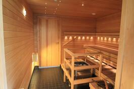 Taloyhtiön yhteinen, uusittu saunatila