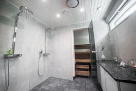 Kaksi showerpipe-suihkua