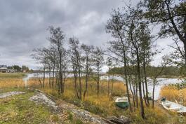 näkymää Suomenlahdelle läheiseltä rannalta