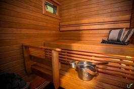 Tunnelmallisessa saunassa on myös ikkuna