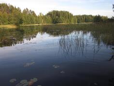 Pitkäjärvi kuvattu laiturilta.