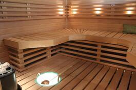 Reilunkokoinen ja näyttävä sauna