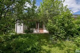 Kaunis, suojaisa puutarha suoraan takapihalla.