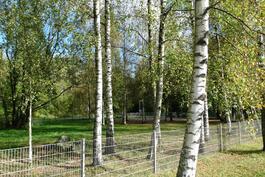 Oulunkyläntien varressa on tilava 2-osainen koirapuisto