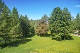 Hoyhtyanpuisto