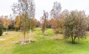 Terassilta avautuu kaunis  ja vehreä puisto maisema