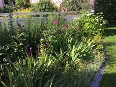 ... etupihaltakin, jossa koko kesän kukkiva kaunis perennapenkki!