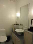 Kuvassa alakerran ajattoman tyylikäs wc!