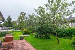 Pihapirissä on mm.omenapuu, kirsikkapensas.