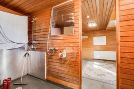 Remonttia odottava pesuhuone ja saunatupa