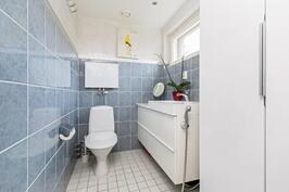 Viihtyisä erillinen wc