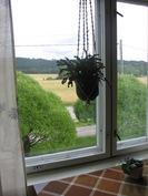 kesäinen ikkunanäkymä