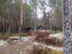 Näkymä pihapiiristä/View from Forest Garden