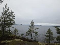 Näkymä Päijänteelle/Lake View to Päijänne