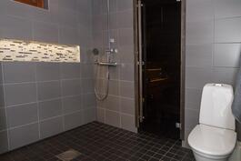 Kaksi wc:tä on arjen luksusta