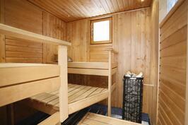 Vastakkain istuttava sauna ikkunalla