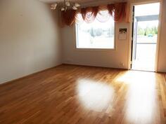 Olohuone, ovi lasitetulle terassille ja takapihalle