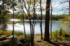 järvi siintää
