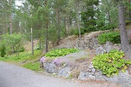 Upea kallioinen helppohoitoinen ympäristö