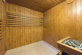 Sauna. Sähkökiuas.