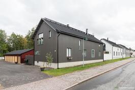 Talot komealla paikalla Pikisaaressa.