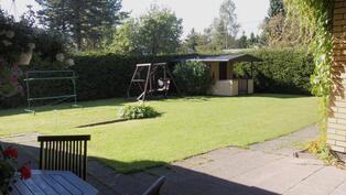 hoidettu nurmikko