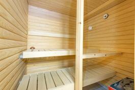 Siistikuntoinen sauna