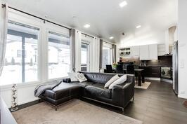 Olohuone ja keittiö tyylikästä yhtenäistä tilaa