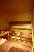 Siisti ja iso sauna