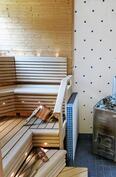 ikkunallisessa saunassa puukiuas ja varaus sähkökiukaalle